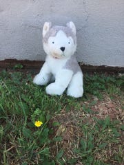 This stuffed puppy was found Sunday, June 16