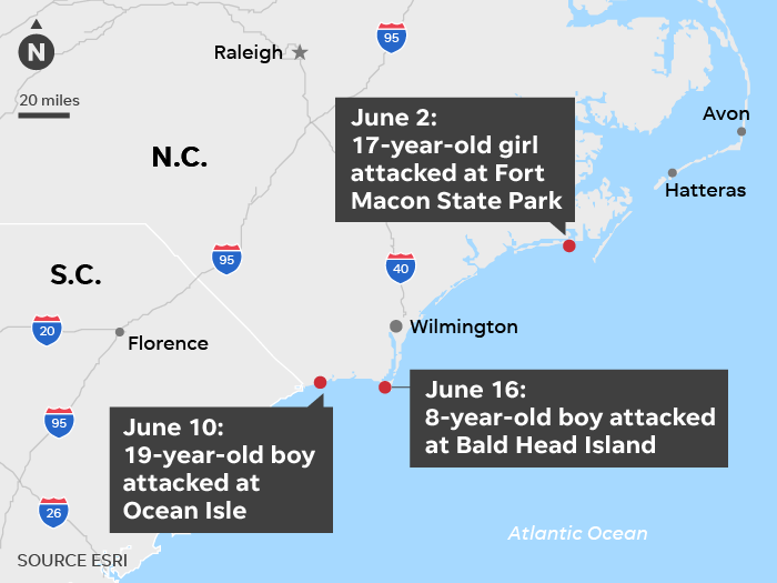 North Carolina Shark Attacks 2019 19 17 And 8 Year Old Among Victims