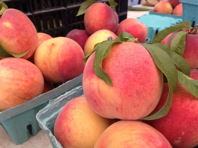 Peaches from Lyda and Sons Family Orchard