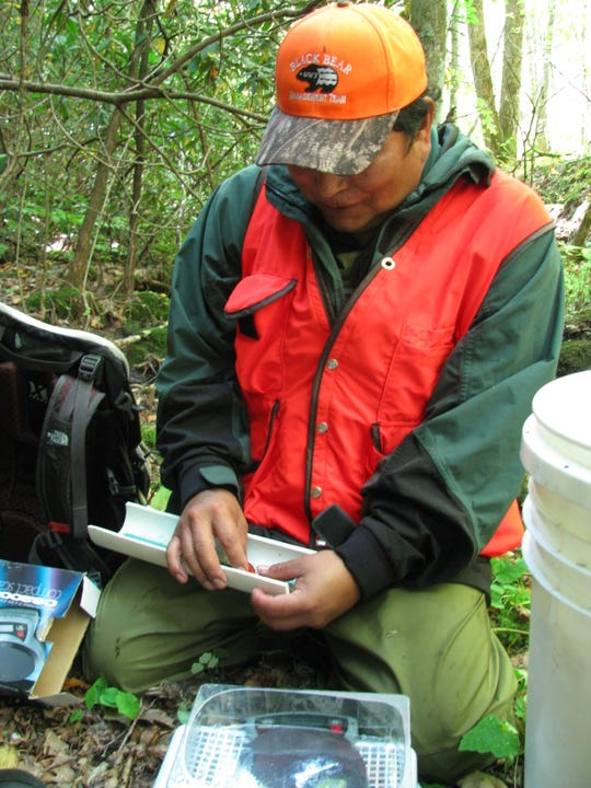 Blue Welch works with the Eastern Band of Cherokee Indians division of natural resources on brook trout monitoring on Soco Creek.