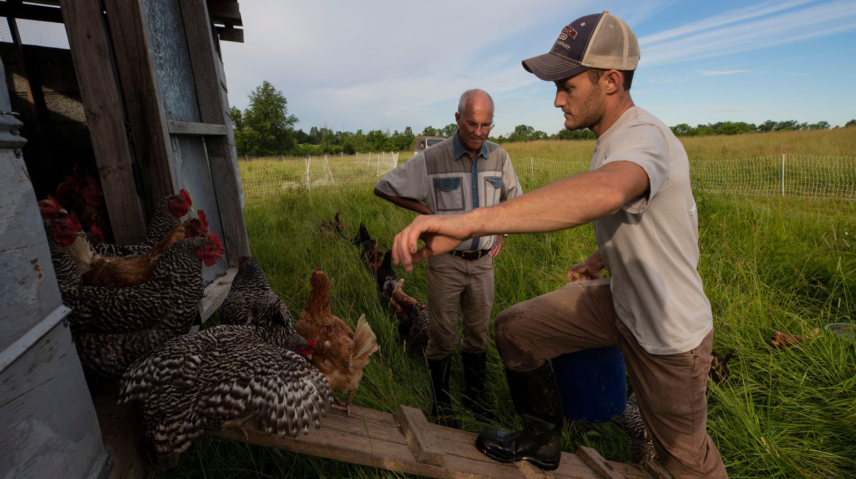 Kentucky saltwater shrimp: How farm in landlocked state made