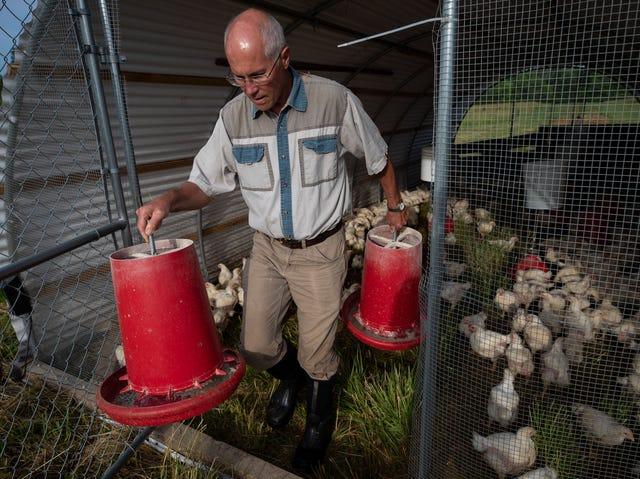 Kentucky saltwater shrimp: How farm in landlocked state made it happen