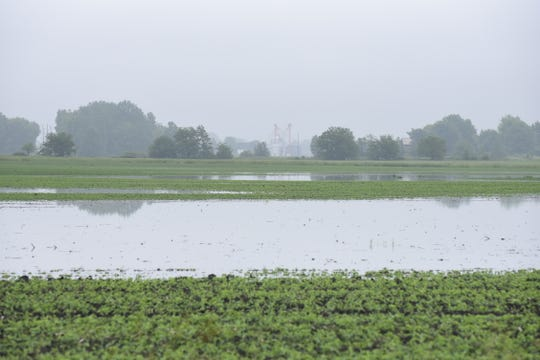 Most fields across North Central Ohio remain partially covered by standing water after being drenched with more than two dozen inches of rain this spring.