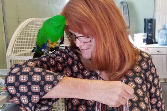 Keriellen Lohrman, owner of Bird Gardens of Naples, poses with one of the sanctuary's many residents. The nonprofit is currently raising funds to help cover the birds' veterinary care, aviary construction and improvements, bird toys and food.