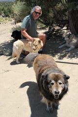 Steven Barr interacts with his dogs outside his woodworking studio north of Aztec on June 18.