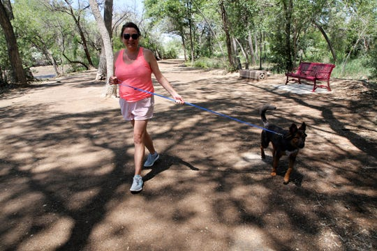 Emli Jaeger walks her six-month-old shepherd mix, Tuco, Tuesday, June 18, 2019, in Berg Park in Farmington.