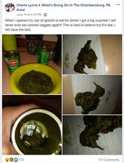 Cherie Lyons found a dead bird in her Del Monte canned spinach June 14, 2019, which she posted to a Facebook group.