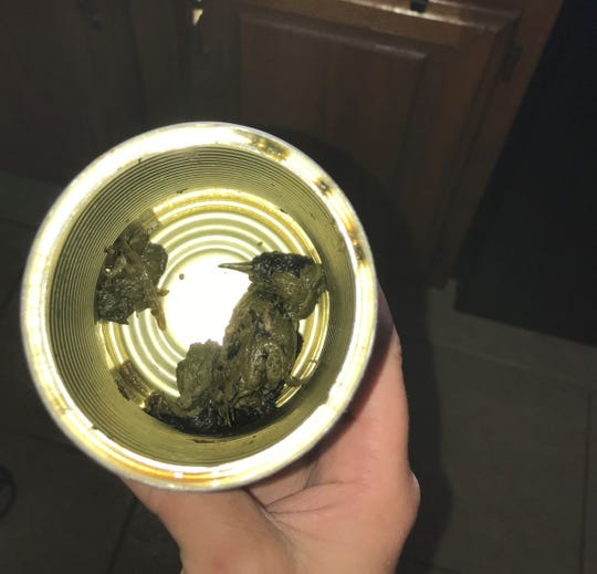 Cherie Lyons discovered a dead bird at the bottom of her Del Monte canned spinach on June 14.