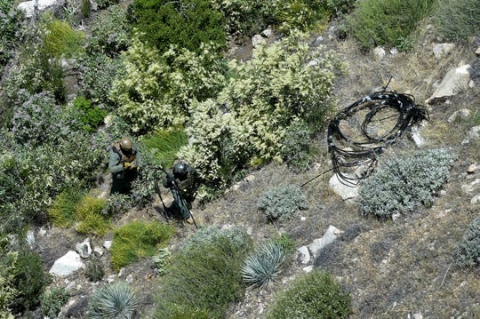 Officers clean up an illegal marijuana growing operation in Los Padres National Forest on June 18, 2019.