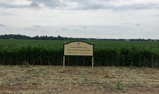 The site of New Castle County's latest park project. The park will be built on this cornfield along Shallcross Lake Road near Marl Pit Road in Middletown.