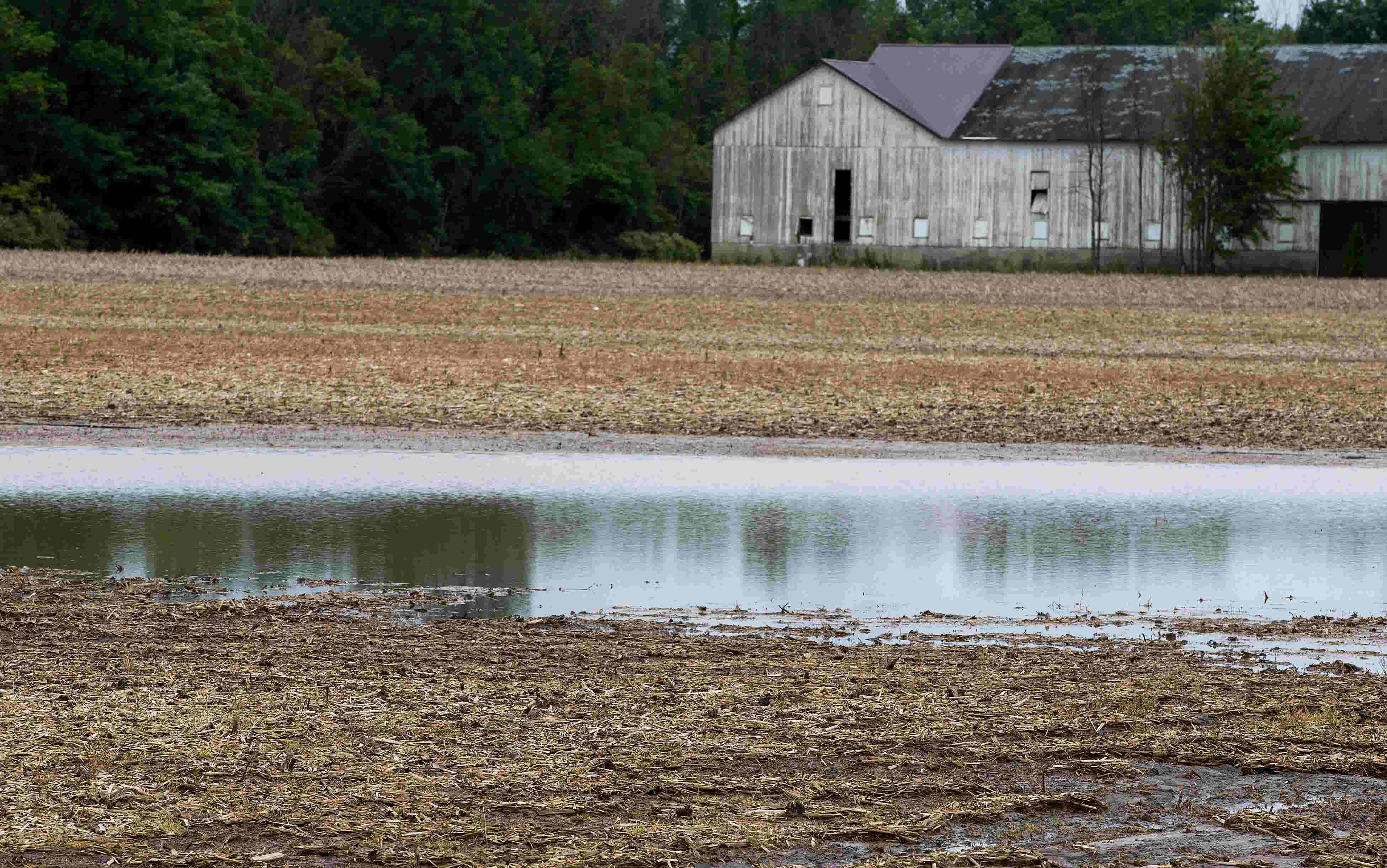 Rainfall woes: Cincinnati has gotten nearly 3 feet of rain so far this year