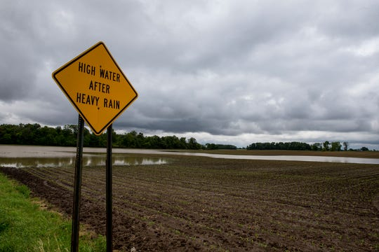 Scott Labig was able to plant this corn in early June. At this time last year, his corn had already grown to his knee. Heavy rainfalls have created planting delays for farmers around Ohio and the Midwest. Photo shot Monday June 17, 2019.