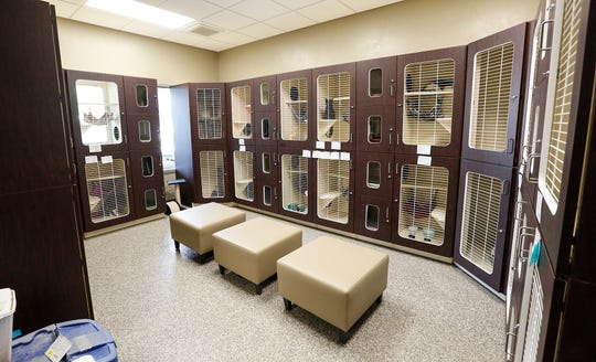 New, multi-room cages hold cats Wednesday, June 19, 2019 at the new Fond du Lac Humane Society on Triangle  Road  in Fond du Lac, Wis.Doug Raflik/USA TODAY NETWORK-Wisconsin