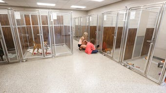 The Fond du Lac Humane Society has expanded to an almost 12,000 square foot building.