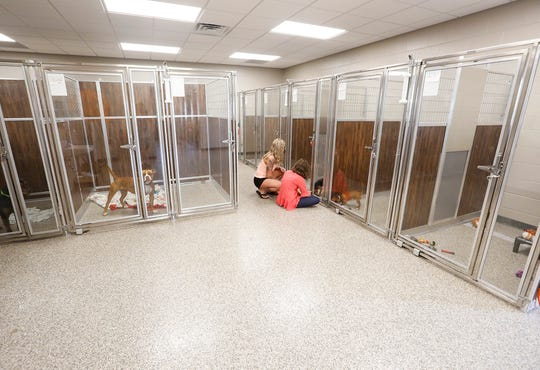 Elizabeth Bauer and Brooke Baker look at dogs Wednesday, June 19, 2019 at the new Fond du Lac Humane Society on Triangle Road  in Fond du Lac, Wis. The $1.8 million facility offers 12,000 square-feet of space for the city's homeless pets.  Doug Raflik/USA TODAY NETWORK-Wisconsin