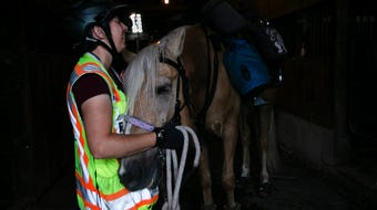 6,000 miles down, 10,000 to go. For the past three years, Meredith Cherry and her horse Apollo have been riding around the country for domestic violence awareness.