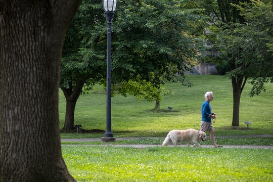 A man walks his dog in Henderson, Ky's Central Park. June 19, 2019.