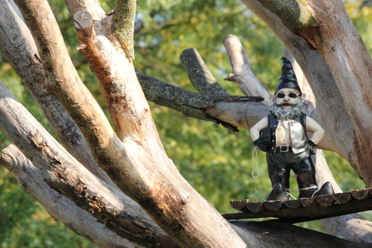 Ariniko O'Meara found this gnome in a tree while walking in Lansing's Bluebell Park Neighborhood. She took the photo and plans on using it for a photo book about her 540-mile excursion through the city.