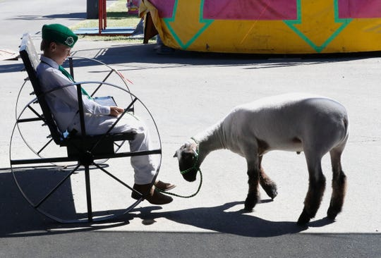 Palo Cedro 4-H member Richard Greenwood takes a break with his lamb, Buddy, before the showmanship competition Wednesday, June 19, 2019, during the Shasta District Fair.