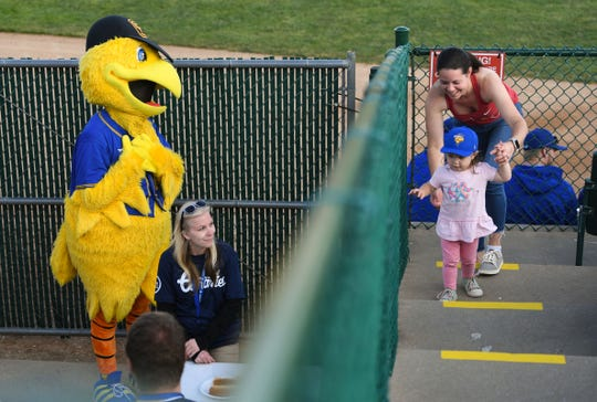 The Sioux Falls Canaries' mascot, Cagey, is enamored by a young fan in the stands at the game against the Saint Paul Saints on Tuesday, June 18, at the Birdcage in Sioux Falls.