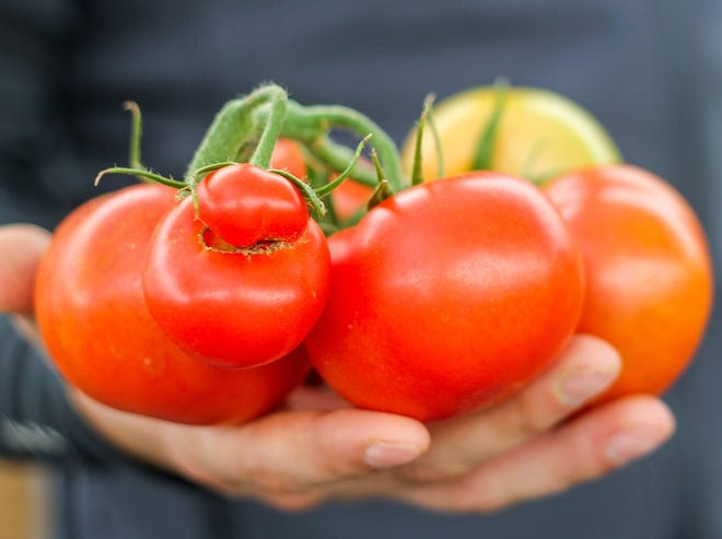 Imperfect Produce sells fruits and vegetables that traditional retailers may not want because they don't meet certain cosmetic standards.