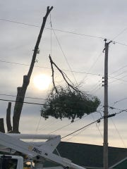 A man was electrocuted Wednesday while trimming a tree near high voltage power lines.