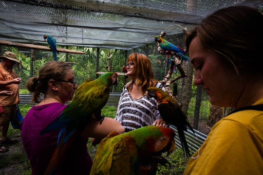 Keriellen Lohrman, center, leads visitors on a tour at Bird Gardens of Naples on Thursday, June 20, 2019. Lohrman lives on the property and cares for the birds daily.