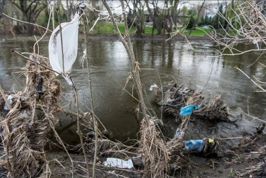 A plastic bag is entwined in the vegetation along the Big Sioux River in Sioux Falls.
