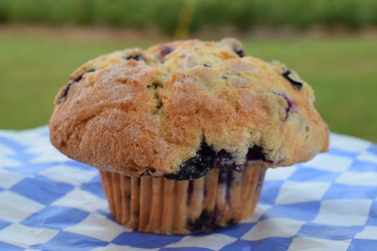 A Thunder Muffin from Persimmon Hill Farm is bursting with blueberries.