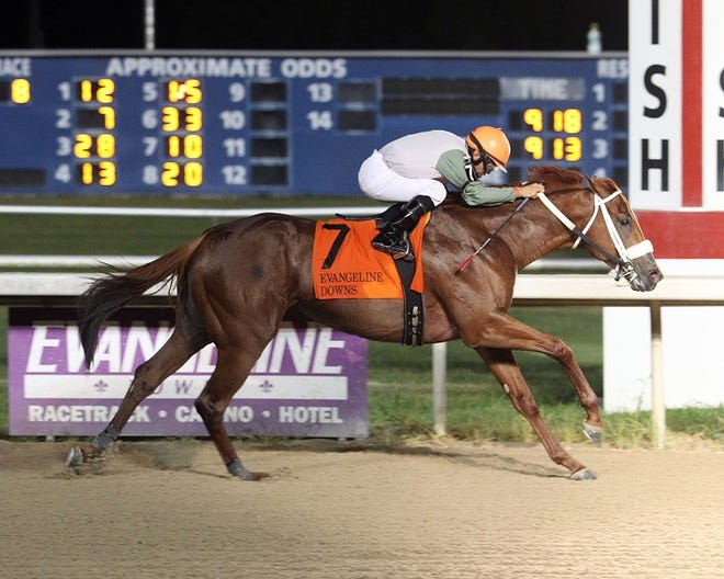 Mocito Rojo, who won the Evangeline Mile a year ago, has been made the 8-5 morning-line favorite in the field of six for the $100,000 Evangeline Mile Saturday Night.