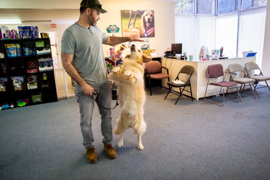 Joe Mulgado does tricks with Zelda at Golden PAWS Assistance Dogs in Naples on Thursday, June 20, 2019. Mulgado, who was a Master Sgt. in the Airforce and served in Iraq and Afghanistan, has had Zelda, his emotional support dog, for three years. Mulgado says he is thankful that there are many different types of services available now to veterans dealing with PTSD.