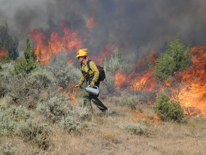 A controlled burn is underway at St. Sebastian River Preserve State Park.