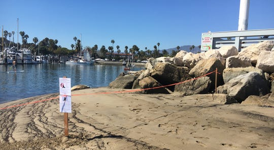 A sign was posted near Santa Barbara harbor after a sea lion there showed signs of domoic acid poisoning.