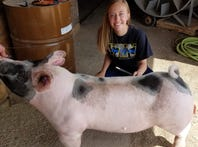 Kewaskum teen wants youth with disabilities to know the fun of showing pigs