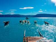 Climate Point: Dog days of climate change