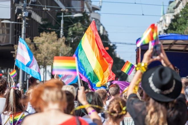 Picture of a crowd of people holding and raising rainbow flags, symbol of the homosexual struggle, during a gay demonstration. The rainbow flag, commonly known as the gay pride flag or LGBT pride flag, is a symbol of lesbian, gay, bisexual and transgender (LGBT) pride and LGBT social movements. Other older uses of rainbow flags include a symbol of peace.