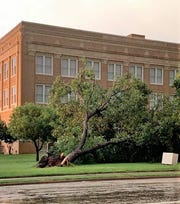 A tree on the grounds of the Callahan County Courthouse was one of many damaged in Baird when a thunderstorm moved through the area Sunday evening.