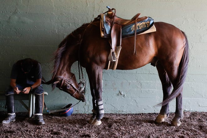 An outrider waits for the fourth race during the last day of the winter/spring meet at the Santa Anita track on Sunday.