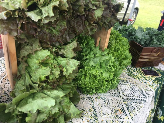 Lush green lettuces and kale were for sale from Dancing the Land Farm Friday, June 21, 2019, at the St. Joseph Farmers Market. Animal manager Archer Meier said lettuces were the only produce ready for market at the time because of the extremely rainy spring weather.