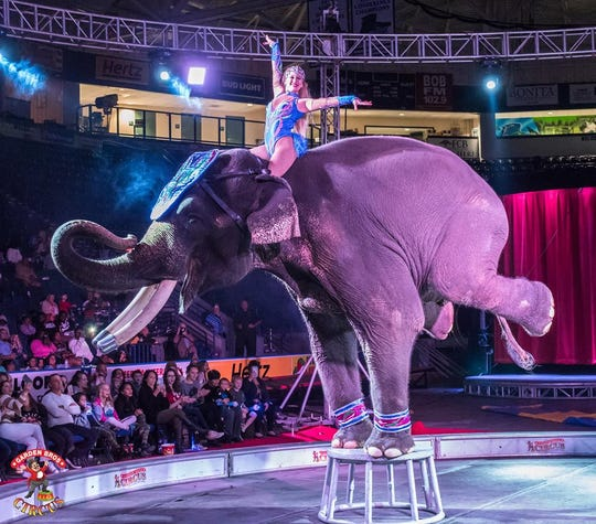 The Garden Brothers Circus is set to perform from 4:30 to 6:30 p.m. and 7:30 to 9:30 p.m. Tuesday July 2. at the Kay Yeager Coliseum. Gates open 1 hour before the show.