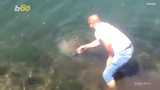 A brave bystander rescued a massive stranded jellyfish - by picking it up with his bare hands.