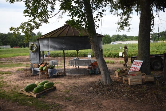 Cliff Dailey and his wife Ashley and children Jack and Julia operate Aunt Julia's Garden located on the corner of Messina Road and Highway 28 West. In addition to selling flowers, the Daileys also sell produce such as sweet corn, tomatoes and watermelon they get from family and friends. The old metal roof of a grain bin came from property belonging to Cliff's family in Franklin Parish.