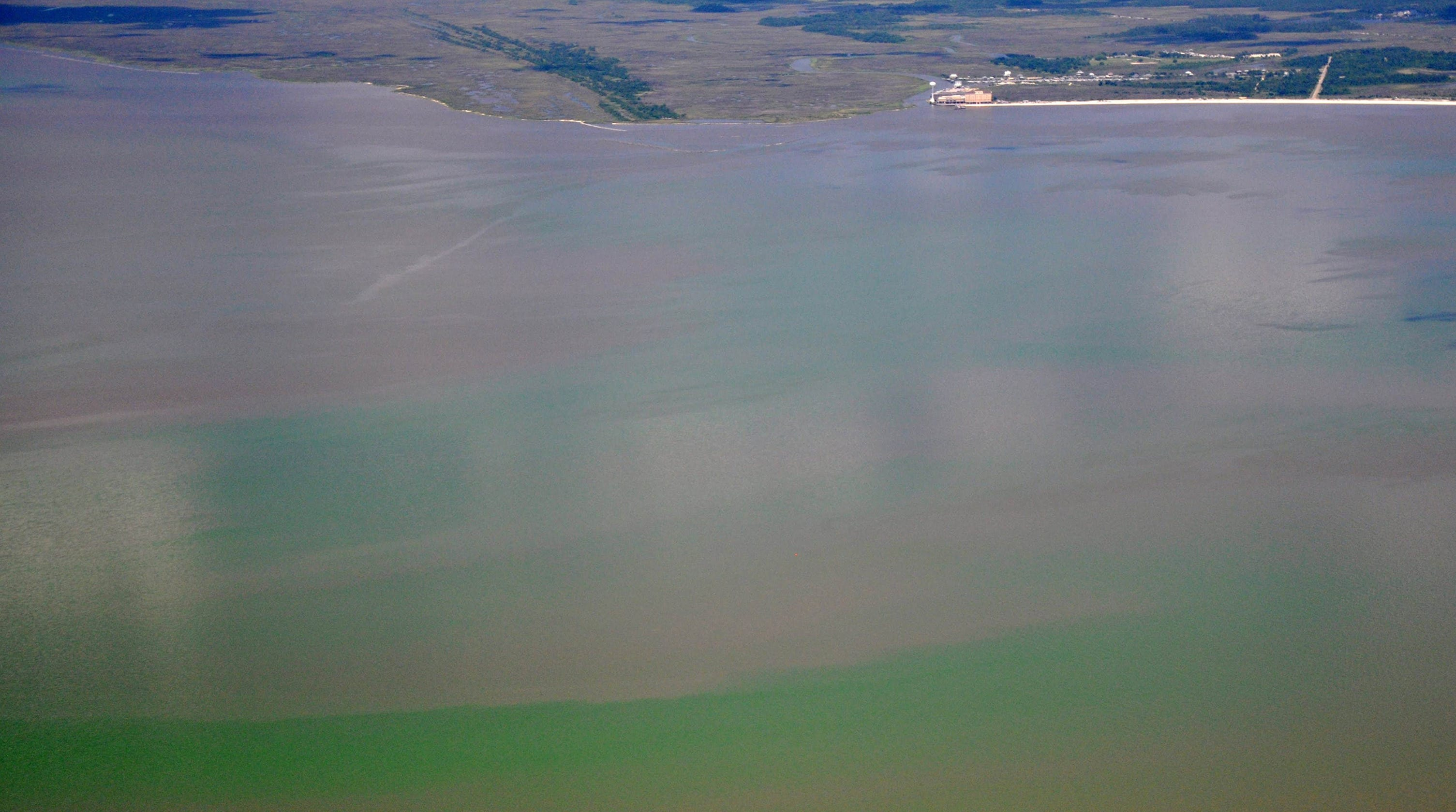Toxic blue-green algae: MS beaches closed to water contact