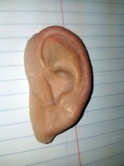 "In this photo made available by the City of Holmes Beach Police Department, a prosthetic ear is displayed, Thursday, June 20, 2019. The ear was found in the sand after the ""World's Strongest Man"" contest on Saturday, June 15. Prosthetic ears can cost thousands of dollars."