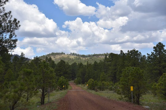 Crater Lake volcano seen from Forest Road 760 north of Flagstaff.