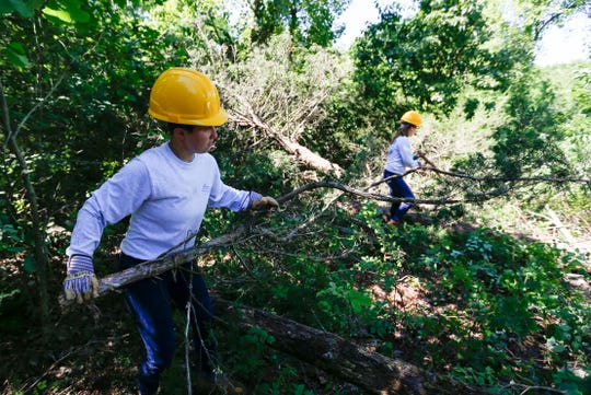 Watershed Conservation Corps crew members Morgan Wetzel (left) and Tory Lydy move branches from a felled cedar tree at Wilson's Creek National Battlefield on Tuesday, June 25, 2019.