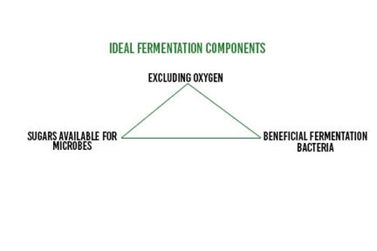 Ideal fermentations require a few key ingredients: exclusion of oxygen, a beneficial fermentation bacteria population present (for example, inoculant), and available sugars for the microbes to work.