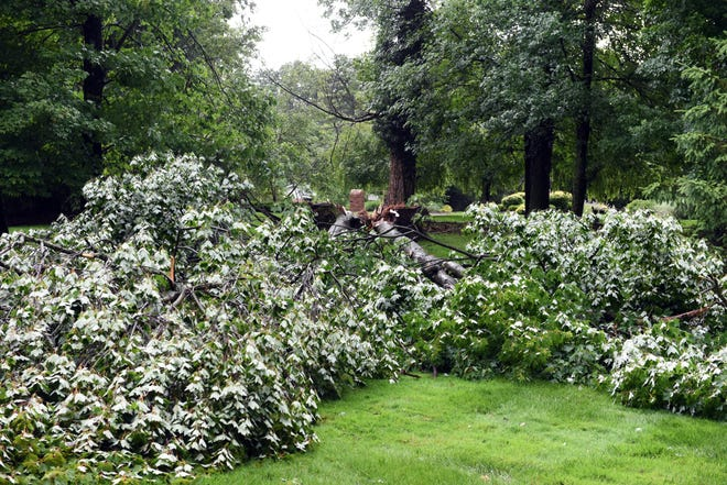 A tree was uprooted at a home off Center Drive on Monday afternoon, the result of a severe storm in Muskingum County. High winds, rain and lightning caused extensive tree and power line damage throughout the region.