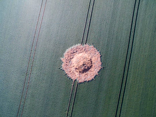 "An aerial photo shows a crater on a barley field in Germany on June 24, 2019. ""width ="" 540 ""data-mycapture-src ="" ""data-mycapture-sm-src ="""