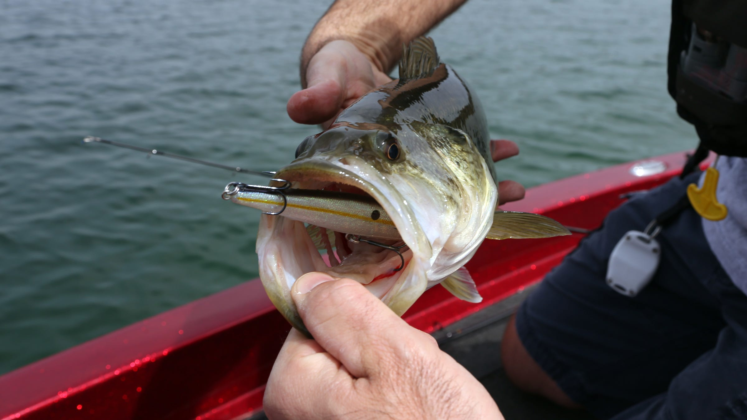 Bassmaster Michigan Has 6 Of Best Lakes For Bass Fishing In Us
